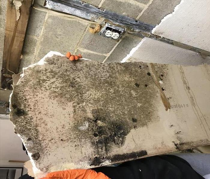 Suspected water damage leads to mold Before