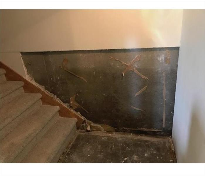 Mold Damage in Omaha After