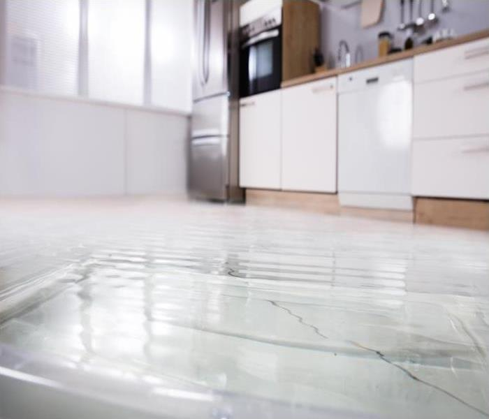 Water Damage Rely On SERVPRO For Efficient Water Cleanup In Elkhorn